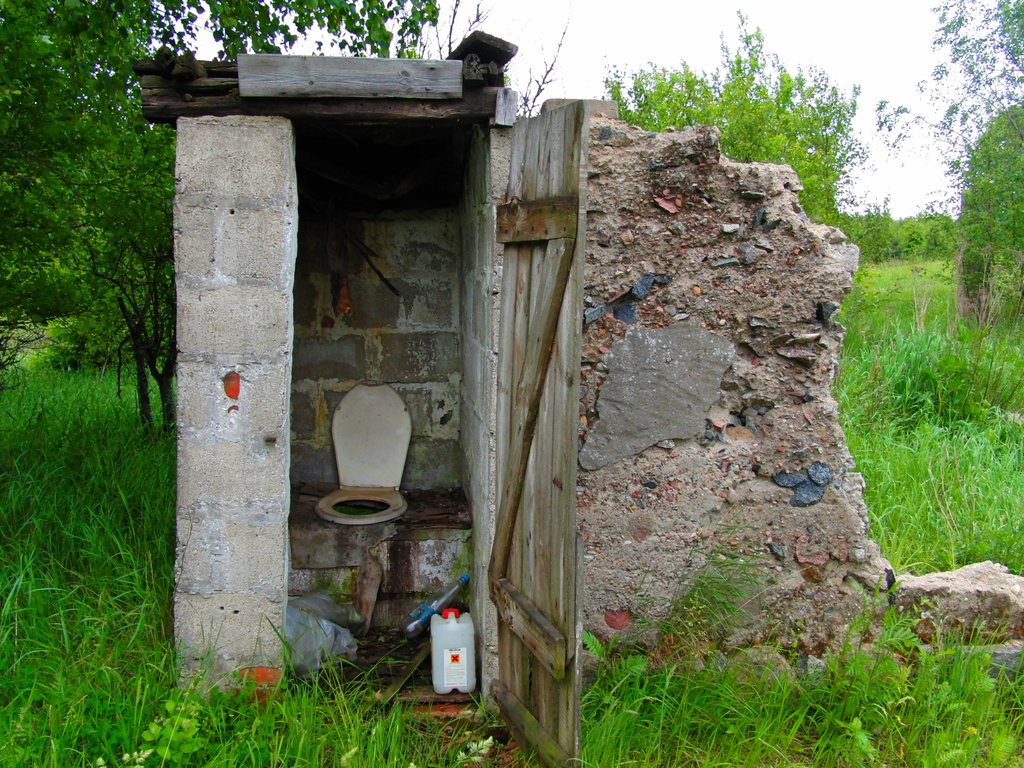 Old_toilet_by_sebasoul.jpg